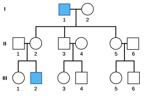 Pedigree illustrating a three generation family and the inheritance of an X-linked recessive trait.